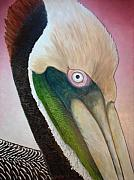 Pelican Peeking Art Greeting Card by NC Artist Scott Plaster