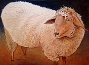 Shaggy Sheep Art Greeting Card by NC Artist Scott Plaster